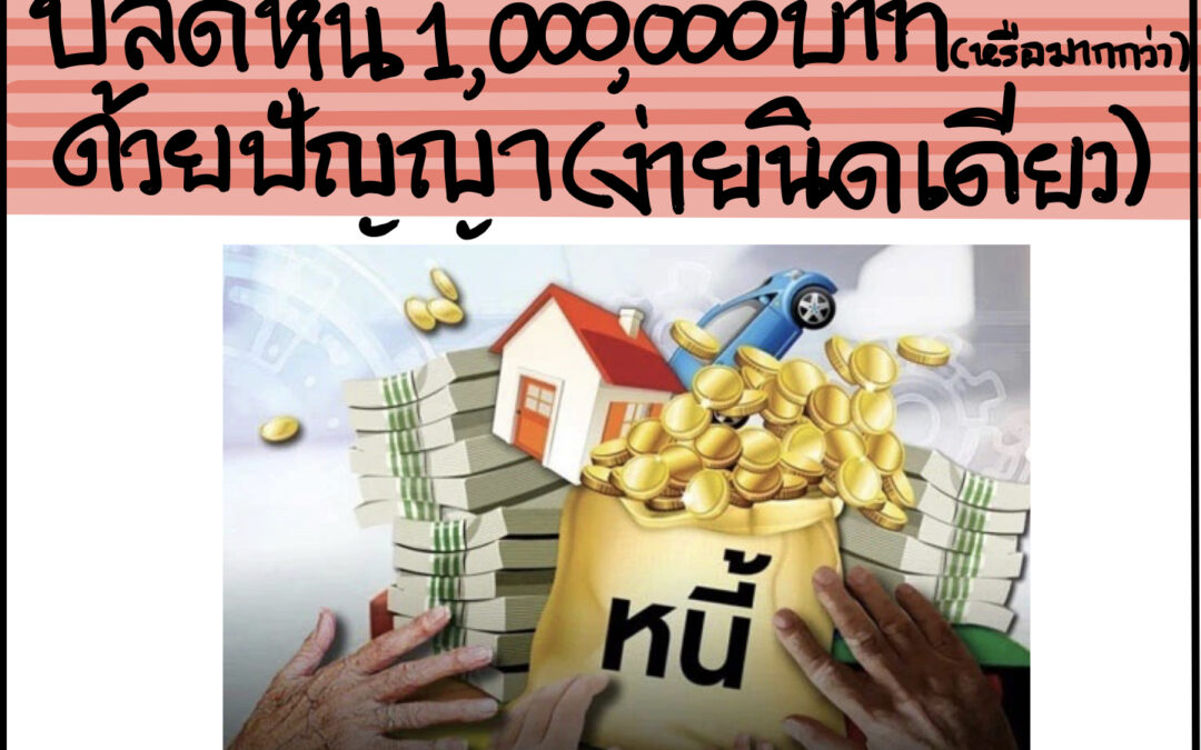 คอร์ส >> ปลดหนี้1,000,000บาท(หรือมากกว่า)ด้วยปัญญา(ง่ายนิดเดียว)